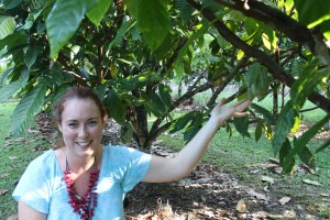 Josephine Moon under cacao tree
